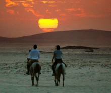 mushrif horse riding dubai