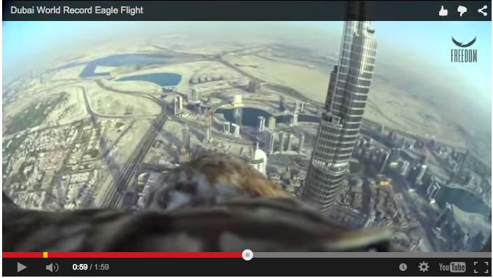 Dubai World Record Eagle Flight