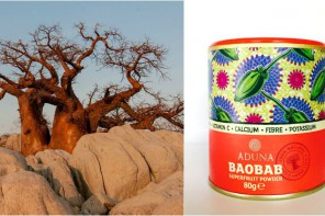 A SUPERFRUIT FROM AFRICA: FIND OUT THE BAOBAB POWDER BENEFITS