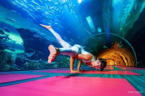 Underwater yoga retreat in dubai